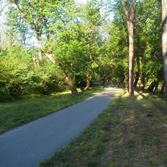 Greenway Bike Trail Marion NC